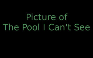"""Picture of pool I can't see"""